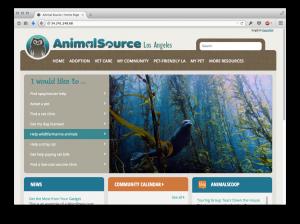 animal source